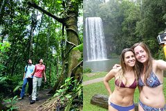 Double Pack-Ancient Rainforest and Waterfalls!