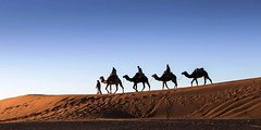 Excursions,Excursions,Multi-day excursions,Multi-day excursions,Excursión to the desert
