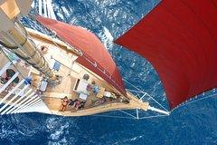 Imagen 2-Day Whitsundays Sailing Adventure: Alexander Stewart