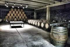 Discover the best cellars of Salento