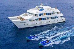 Imagen Galapagos Islands Cruise: 5-Day Catamaran Sail Aboard the 'Catamaran Treasure of Galapagos'