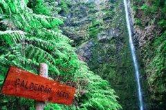 City tours,City tours,Activities,Bus tours,Full-day tours,Nature excursions,
