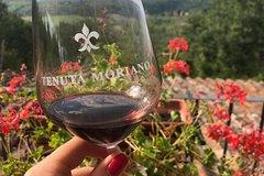 Wine tasting at Tenuta Moriano