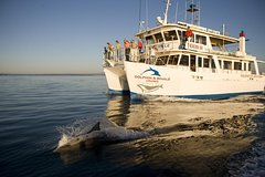 Imagen Jervis Bay Dolphin Watch Cruise