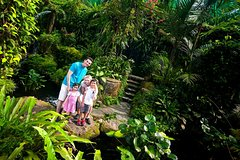Imagen Kuala Lumpur Private Half-Day Family Tour of Nature, Birds and Butterflies