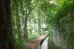 City tours,Activities,Activities,Walking tours,Water activities,Nature excursions,
