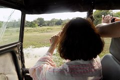 Kumana National Park Wildlife Safari