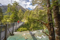Imagen Half-Day Routeburn Track Guided Walk from Queenstown