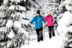 Snowshoe Tours in the Dolomites - One day private excursion from Cortina