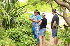 Shore Excursion: Small Group VIP Island Tour with BONUS experience!