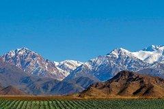 Imagen Excursión privada al Valle de Uco desde Mendoza, con almuerzo y cata de vinos incluidos