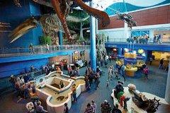 City tours,City tours,Tickets, museums, attractions,Tickets, museums, attractions,City passes,Skyp the line tickets,Major attractions tickets,