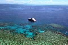 Great Barrier Reef Full-Day Scuba Diving from Port Douglas
