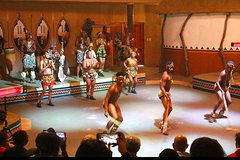 Cradle of Human Kind Tour and Lesedi Cultural Village Day Tour Private