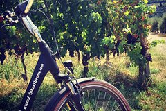 E-Bike Florence Tuscany Ride with Vineyard Visit