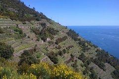 5 Terre hiking tour