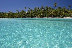 Samana Full Day Trip from Punta Cana