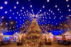 The Christmas Tree Crawl