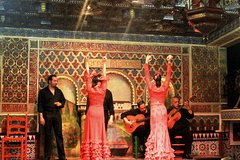 Imagen Flamenco Show with Lesson from Madrid