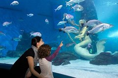 Imagen Skip the Line: SEA LIFE Melbourne Aquarium Admission Ticket