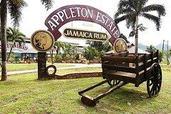 Appleton Estate Rum Tour and Tasting from Montego Bay