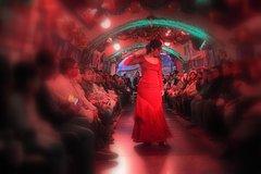 Imagen Espectáculo de flamenco en las cuervas del Sacromonte y visita a pie del Albaicín en Granada