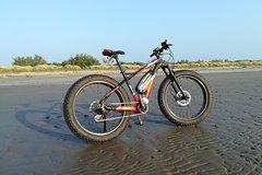 1 Day Venice E-Bike Rental