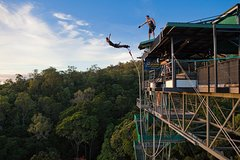 Bungy Jump or Giant Jungle Swing or Bungy & Swing Combo