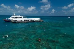 Express Outer Great Barrier Reef Cruise from Cairns