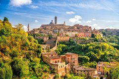 Full Day Siena and San Gimignano with Private Driver