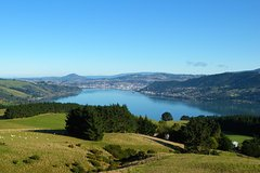 Imagen Otago Peninsula Scenic and City Highlights Tour