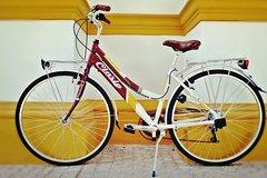 Imagen Rent city bike Seville