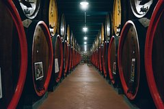 Great wine tour in Tuscany From Florence