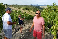 Best of Florence and Tuscany in 4 Days - Round Trip, David and Tuscany Wine Tour