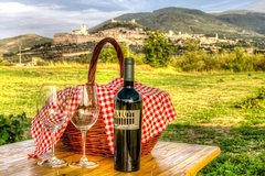 Picnic and wine tasting in the Vineyard of Assisi
