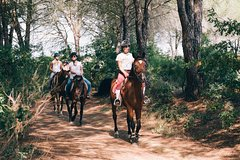 Horseback Riding Tour with wine tasting from San Gimignano
