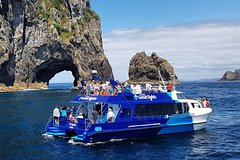 Imagen The Bay of Islands Luxury Day Tour From Auckland