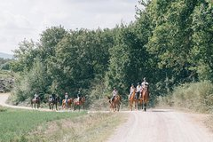 Horseback Riding tour with lunch and Wine Tasting