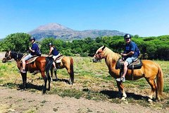 Pompei Ruins & Horseback riding on Vesuvius with Lunch from Naples