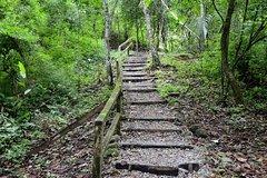 Actividades,Actividades de aventura,Salidas a la naturaleza,
