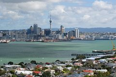 Imagen Private Tour: Auckland City and Countryside Tour