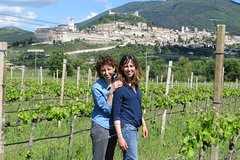 Wine tasting and walk in the Vineyard of Assisi