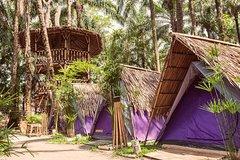 Imagen Eco tents at Tadom Hill Resort