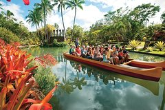 Honolulu Hawaii Oahu Tour – Pearl Harbor, Dole Pineapple & Polynesian Cultural Center 19153P16