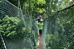 Imagen Forest Research Institute Malaysia (FRIM) Nature Trekking from Kuala Lumpur