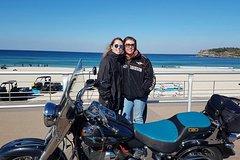 Bondi & Sydney Sights Tour 1.5hrs