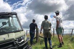 4x4 Farm Tour on Family Farm - Shore Excursion