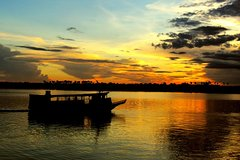 Imagen River by Night: Jungle Night tour
