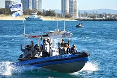 Gold Coast Broadwater Adventure Boat Tour with Island Stopover