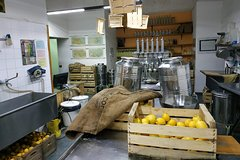 Limoncello Experience: Factory, Tasting and more!
